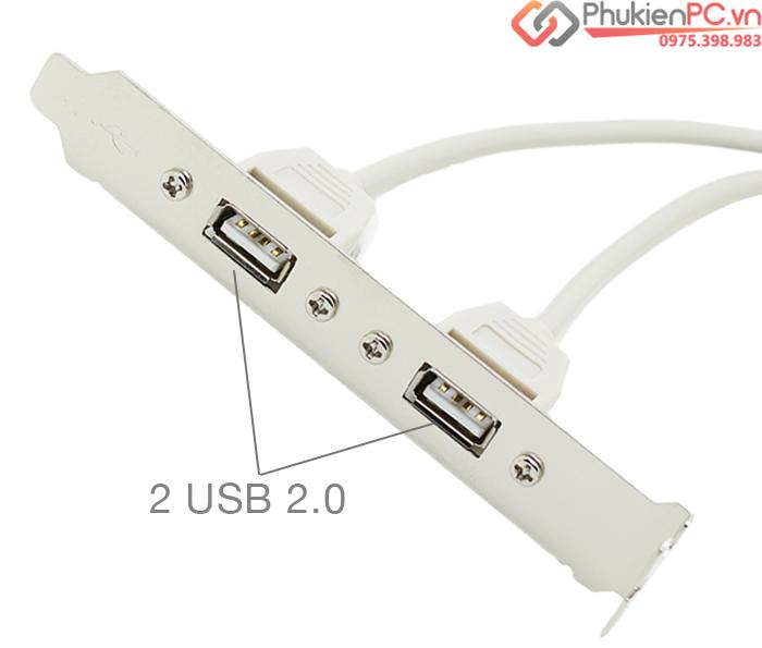 Cáp chuyển đổi USB 9 Pin mainboard ra 2 USB 2.0